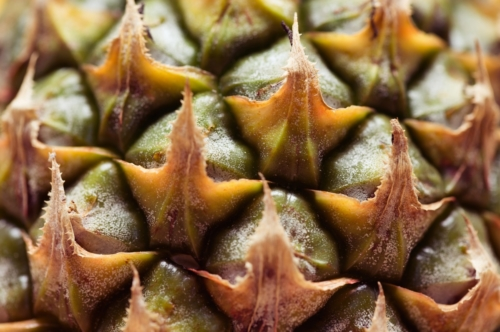 Full Frame Shot Of Pineapple - slon.pics - free stock photos and illustrations