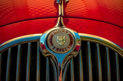 Close up of Jaguar logo - slon.pics - free stock photos and illustrations