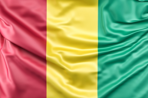 Flag of Guinea - slon.pics - free stock photos and illustrations