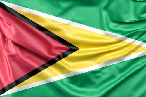 Flag of Guyana - slon.pics - free stock photos and illustrations