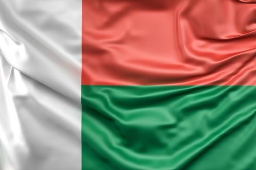 Flag of Madagascar - slon.pics - free stock photos and illustrations