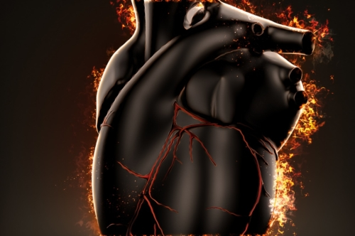 Burning heart - slon.pics - free stock photos and illustrations