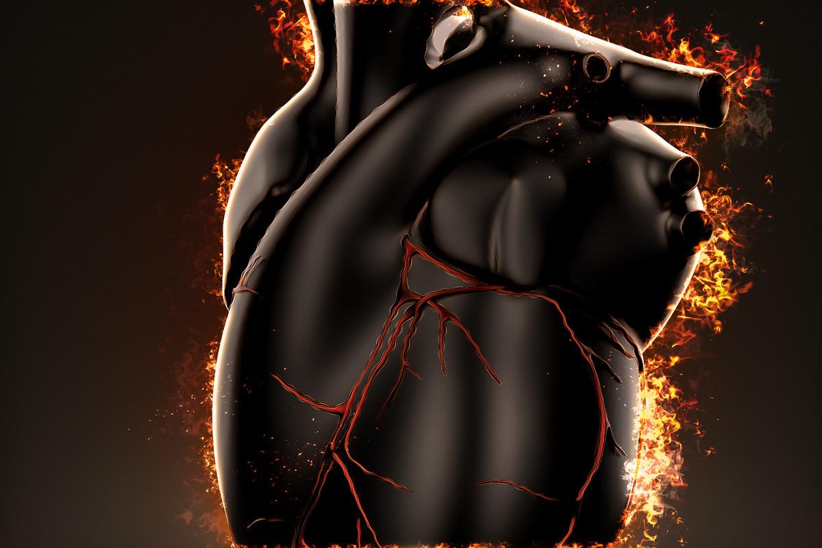 Burning heart - slon.pics - free stock photos and illustrations