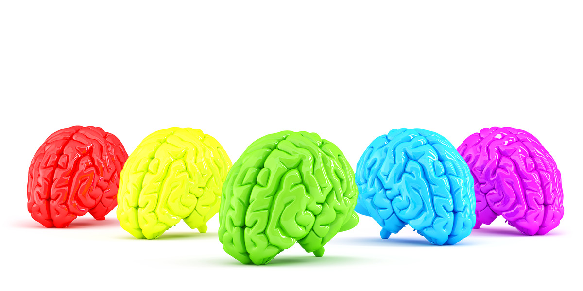 Colored human brains. Creative concept. 3D illustration. Isolated. Contains clipping path - slon.pics - free stock photos and illustrations