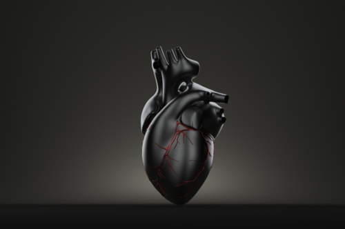 Dark human heart. 3D illustration. Contains clipping path - slon.pics - free stock photos and illustrations