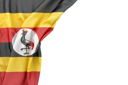 Flag of Uganda in the corner on white background. Isolated, contains clipping path - slon.pics - free stock photos and illustrations