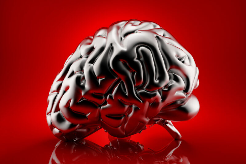 Metallic human brain rendered over red background. 3D illustration - slon.pics - free stock photos and illustrations