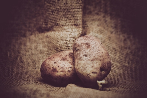 Raw potatoes on rustic burlap background - slon.pics - free stock photos and illustrations