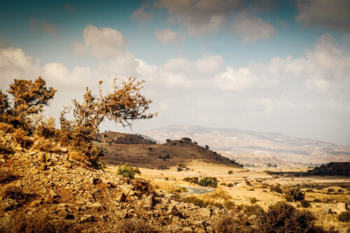 Scant and dry rocky mediterranean landscape - slon.pics - free stock photos and illustrations