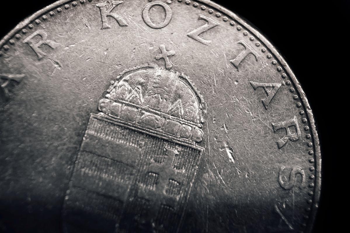 Ten Hungarian Forint coin. Macro - slon.pics - free stock photos and illustrations