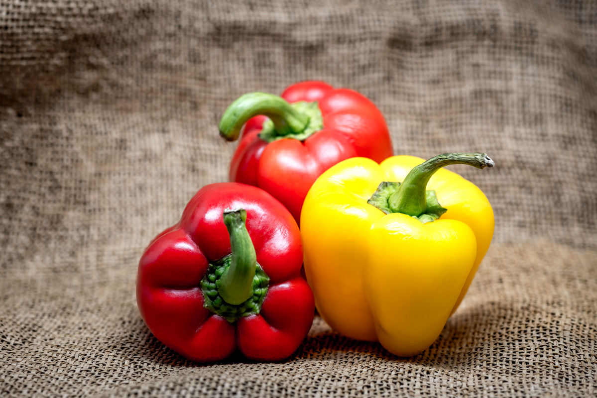 Various coloured bell peppers - slon.pics - free stock photos and illustrations