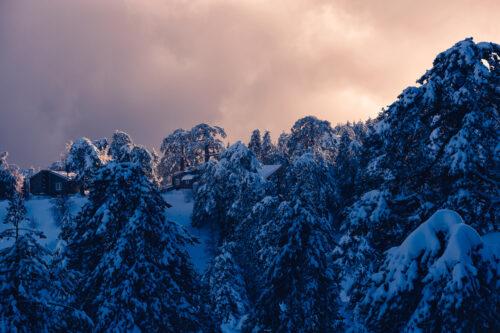 Winter Sunset - slon.pics - free stock photos and illustrations