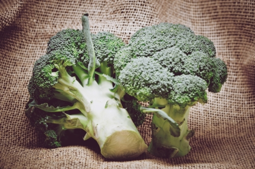 Broccoli on burlap - slon.pics - free stock photos and illustrations