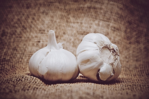 Garlic on burlap background - slon.pics - free stock photos and illustrations