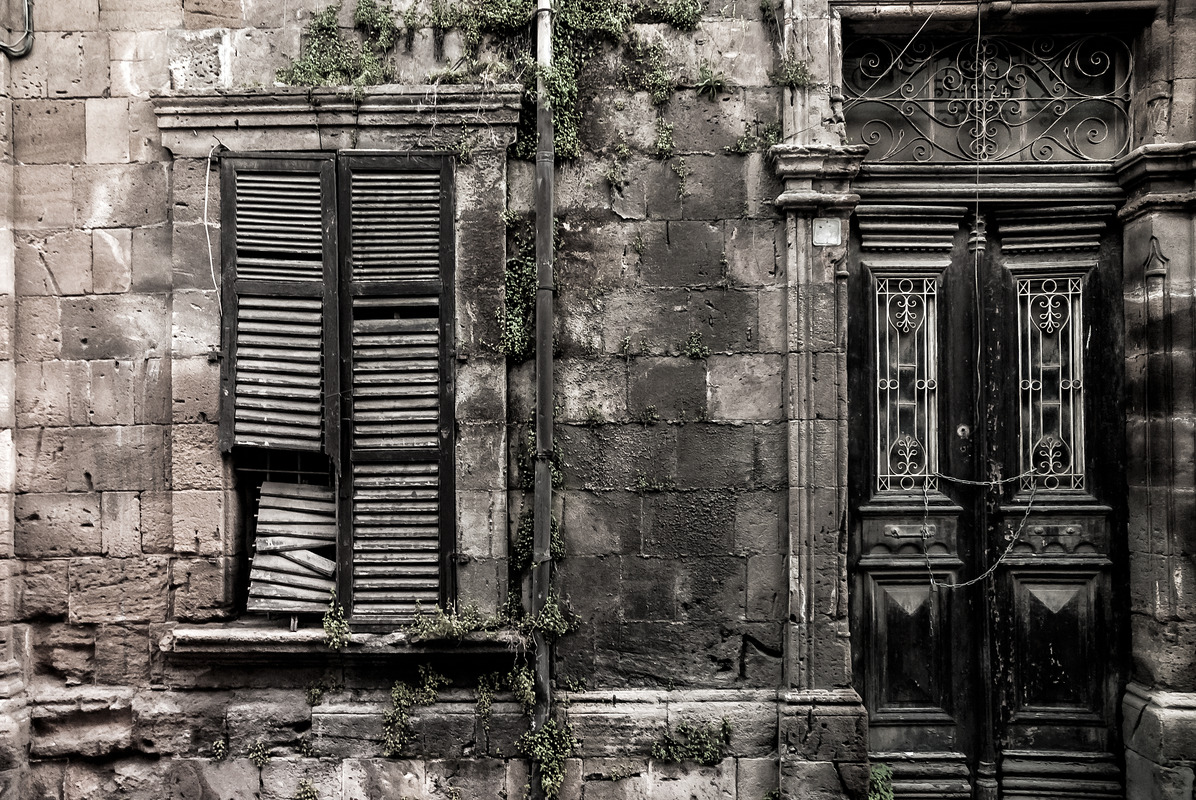 Frontal view of old weathered building with plants growing on facade - slon.pics - free stock photos and illustrations
