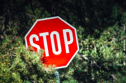 STOP sign in a woods - slon.pics - free stock photos and illustrations