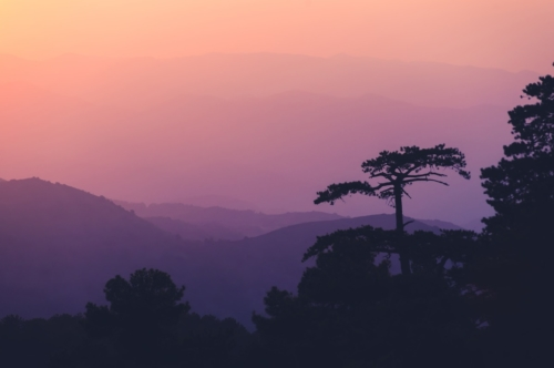 Sunset in the Troodos mountains. Cyprus - slon.pics - free stock photos and illustrations