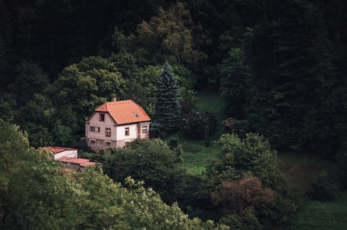 Lonely small house on the edge of the forest - slon.pics - free stock photos and illustrations