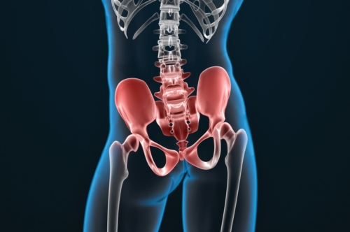 3d illustration of the painful sacrum and pelvis - slon.pics - free stock photos and illustrations