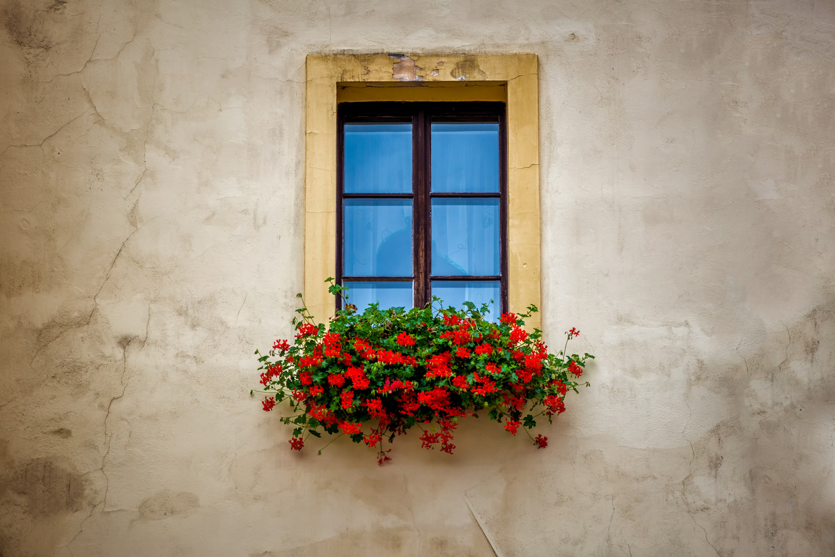Old window frame with flower box - slon.pics - free stock photos and illustrations