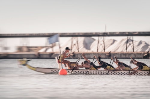 A Competing Dragonboat team in action - slon.pics - free stock photos and illustrations