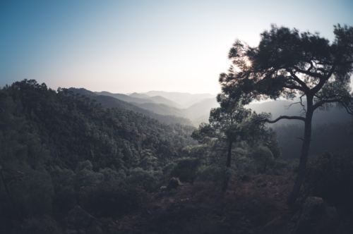 Hazy mountains. Troodos, Cyprus - slon.pics - free stock photos and illustrations