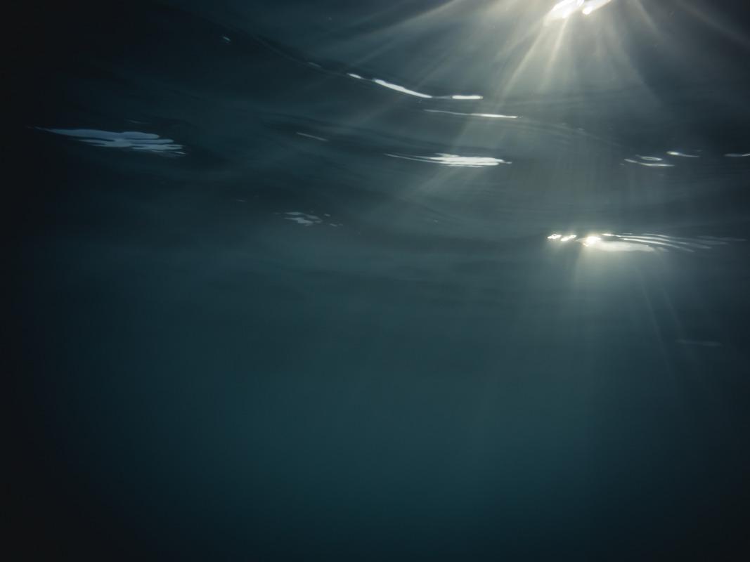Underwater rays - slon.pics - free stock photos and illustrations