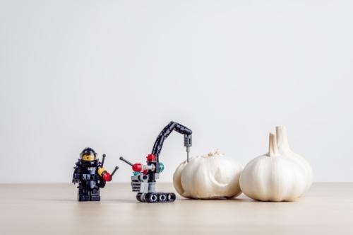 Garlic peeling concept - slon.pics - free stock photos and illustrations