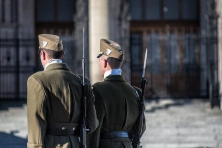 Guard of honor at Hungarian parliament - slon.pics - free stock photos and illustrations